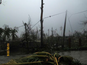 Trees are broken and leafless, crops totally destroyed...